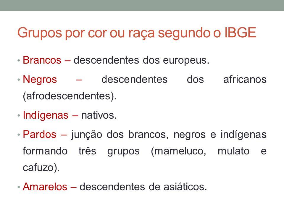 Grupos por cor ou raça segundo o IBGE Brancos – descendentes dos europeus. Negros – descendentes dos africanos (afrodescendentes). Indígenas – nativos