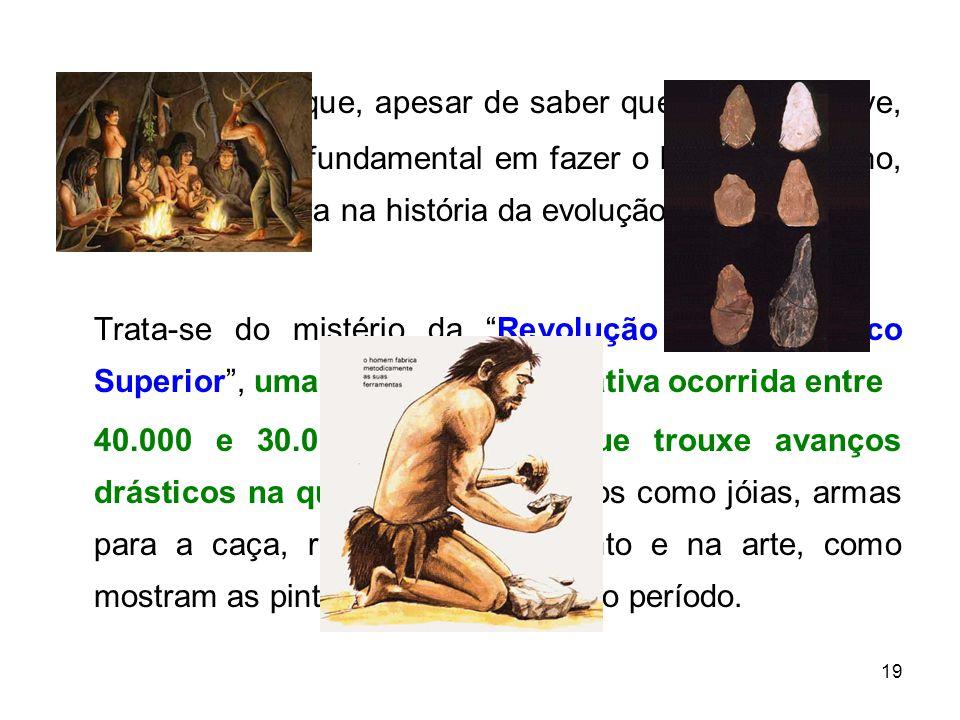 19 O problema é que, apesar de saber que o cérebro teve, sim, um papel fundamental em fazer o homem humano, resta um enigma na história da evolução.