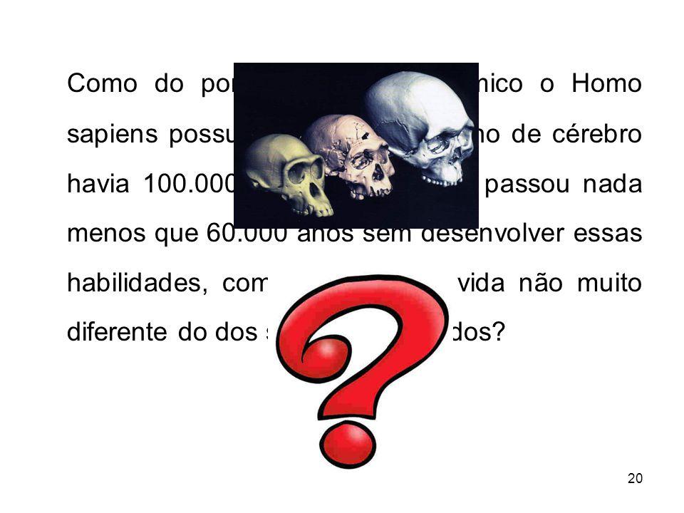 20 Como do ponto de vista anatômico o Homo sapiens possuía o mesmo tamanho de cérebro havia 100.000 anos, por que ele passou nada menos que 60.000 anos sem desenvolver essas habilidades, com um estilo de vida não muito diferente do dos seus antepassados?