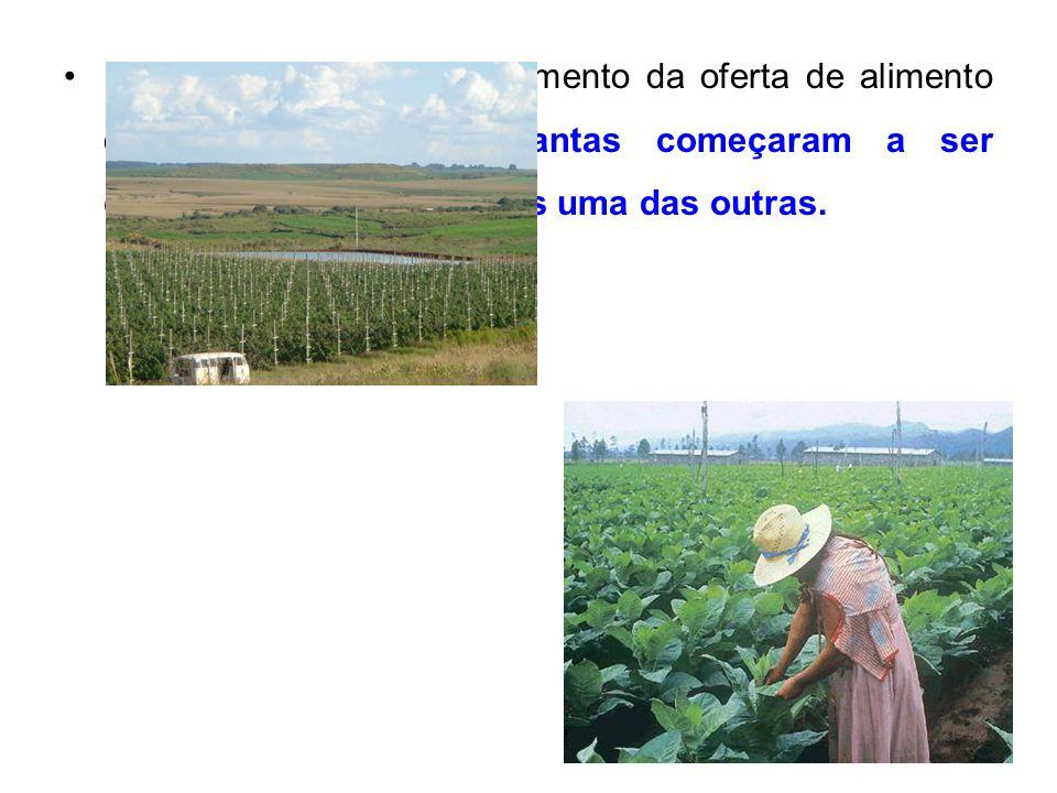 27 Essa prática permitiu o aumento da oferta de alimento dessas pessoas, as plantas começaram a ser cultivadas muito próximas uma das outras.