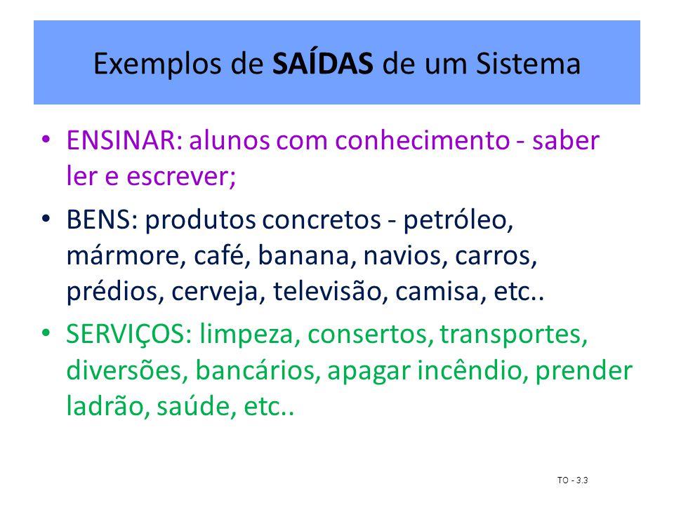 Exemplos de SAÍDAS de um Sistema ENSINAR: alunos com conhecimento - saber ler e escrever; BENS: produtos concretos - petróleo, mármore, café, banana,