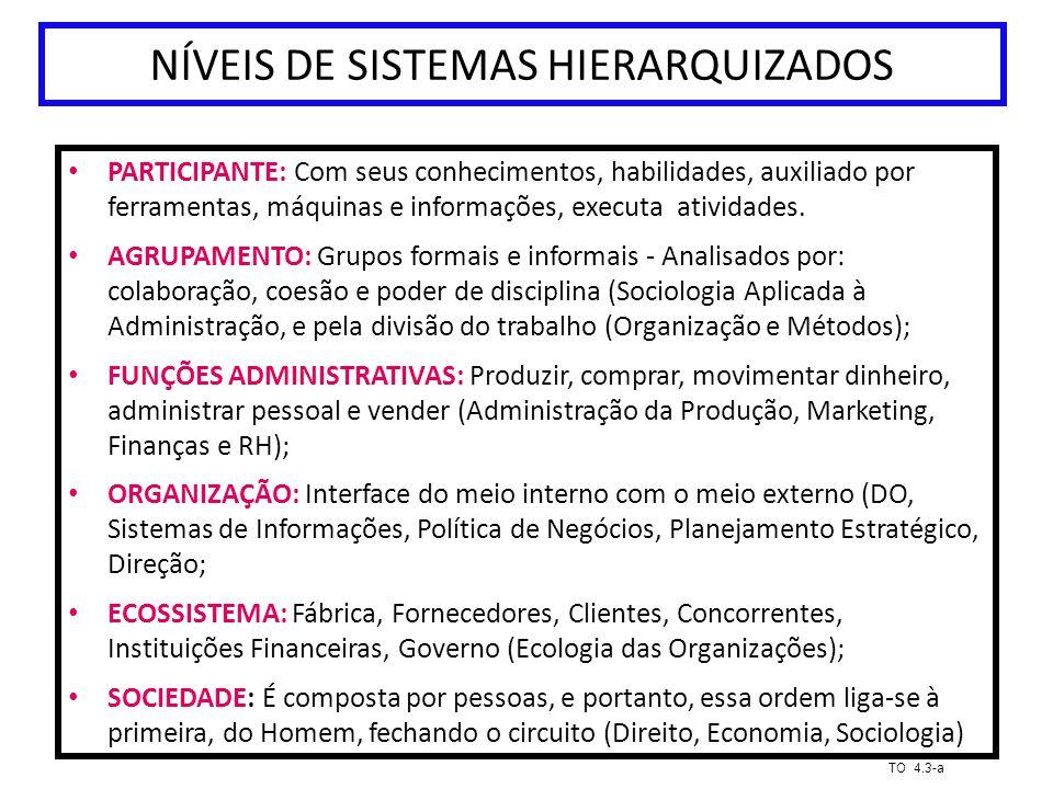 NÍVEIS DE SISTEMAS HIERARQUIZADOS PARTICIPANTE: Com seus conhecimentos, habilidades, auxiliado por ferramentas, máquinas e informações, executa ativid