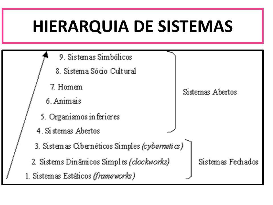 TEORIA GERAL DE SISTEMAS - HIERARQUIA DOS SISTEMAS Os sistemas são hierárquicos ou piramidais, isto é, são constituídos de sistemas ou subsistemas correlacionados entre si por um processo ou padrão de interação.