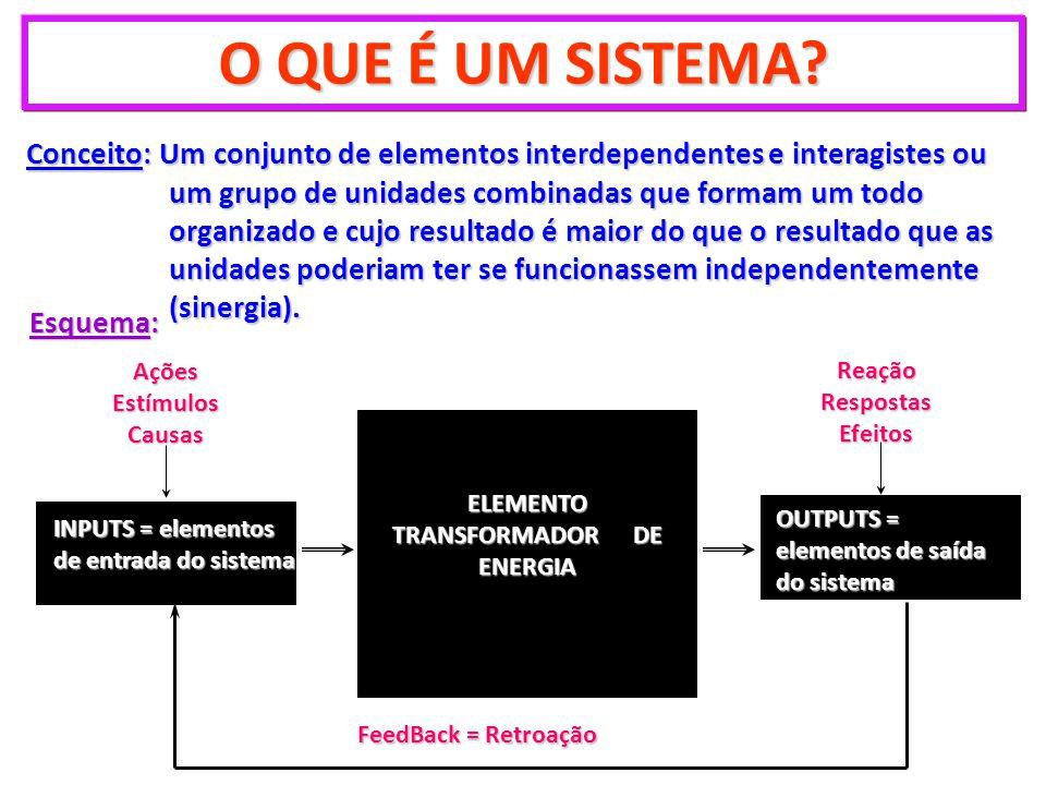 O QUE É UM SISTEMA? Conceito: Um conjunto de elementos interdependentes e interagistes ou um grupo de unidades combinadas que formam um todo organizad