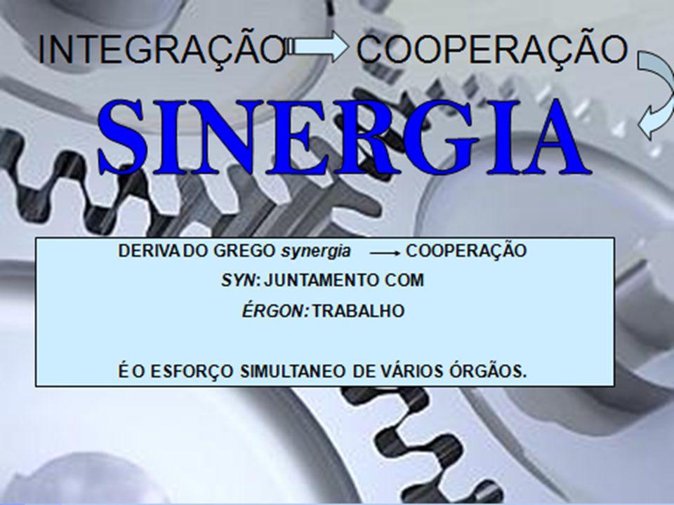 O SISTEMA ABRANGE: A FUNÇÃO de suprir necessidades do meio ambiente ; A ESTRUTURA para concretizar as funções, formada por conjuntos de: - Entradas provindas do meio ambiente.
