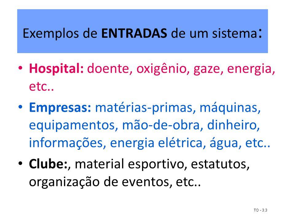 Exemplos de ENTRADAS de um sistema : Hospital: doente, oxigênio, gaze, energia, etc.. Empresas: matérias-primas, máquinas, equipamentos, mão-de-obra,