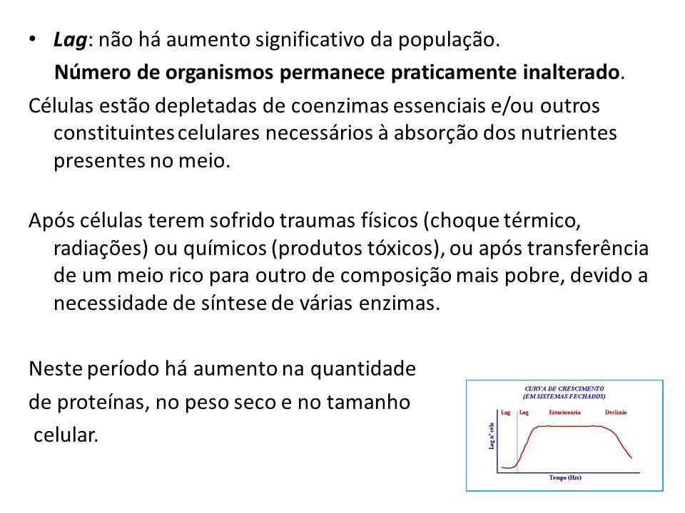 Lag: não há aumento significativo da população.