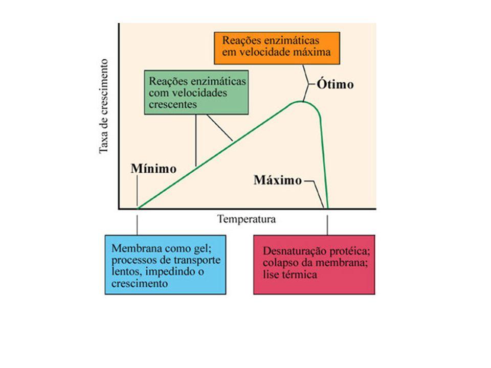 Temperaturas cardeais dos microrganismos (Adaptado de Madigan et al., Brock Biology of Microorganisms, 2003)