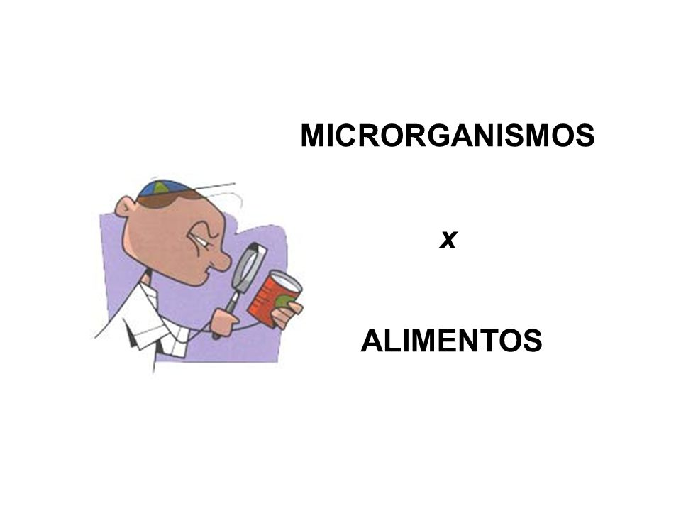 MICRORGANISMOS x ALIMENTOS