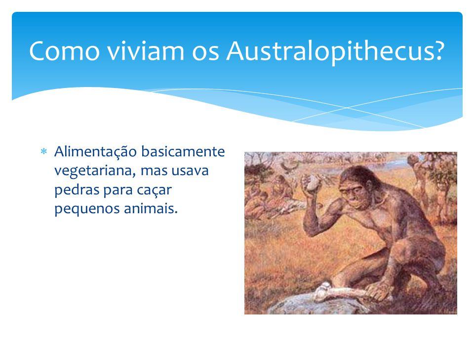 Como viviam os Australopithecus? Alimentação basicamente vegetariana, mas usava pedras para caçar pequenos animais.