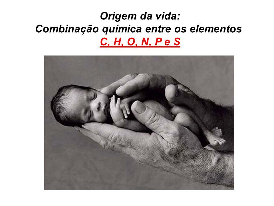 Origem da vida: Combinação química entre os elementos C, H, O, N, P e S