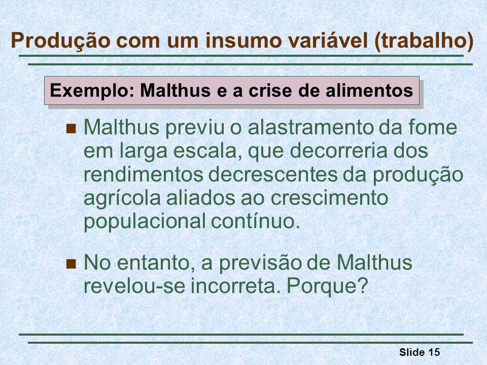 Slide 15 Malthus previu o alastramento da fome em larga escala, que decorreria dos rendimentos decrescentes da produção agrícola aliados ao crescimento populacional contínuo.