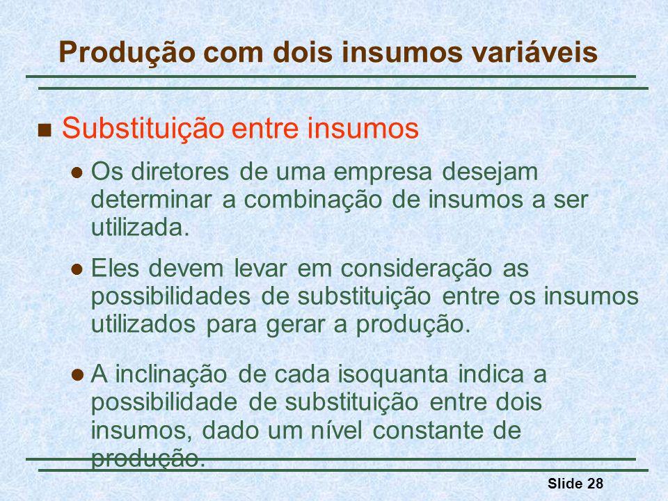 Slide 28 Substituição entre insumos Os diretores de uma empresa desejam determinar a combinação de insumos a ser utilizada. Eles devem levar em consid