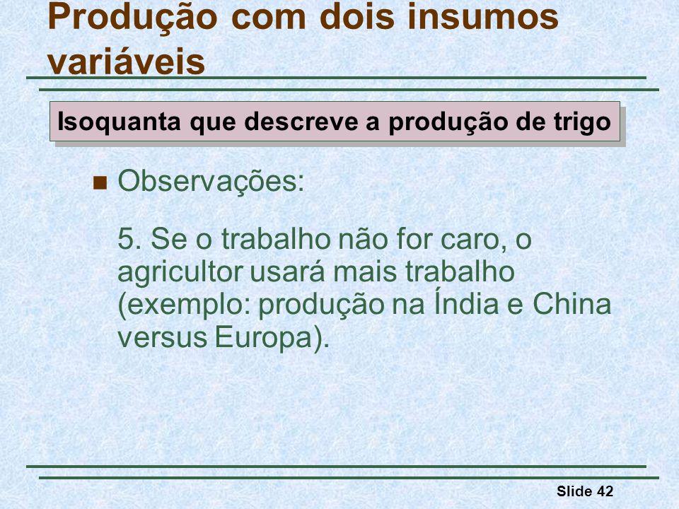 Slide 42 Observações: 5. Se o trabalho não for caro, o agricultor usará mais trabalho (exemplo: produção na Índia e China versus Europa). Produção com