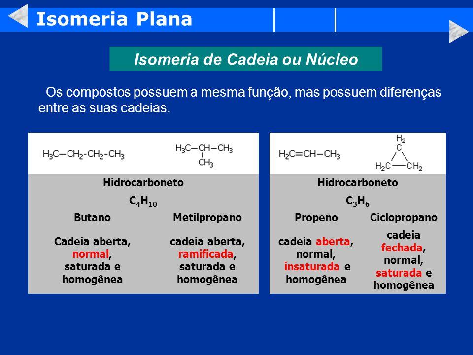 Isomeria Plana Isomeria de Cadeia ou Núcleo Os compostos possuem a mesma função, mas possuem diferenças entre as suas cadeias.