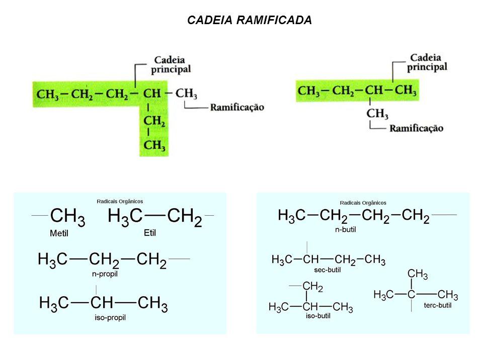 CADEIA RAMIFICADA