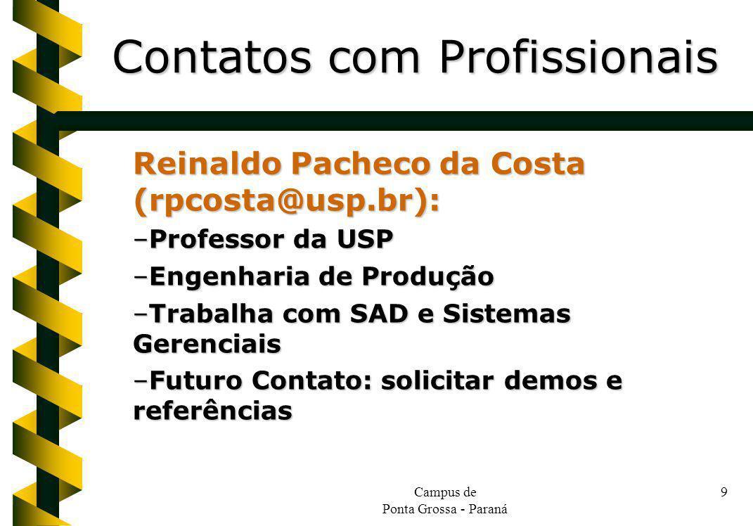 Campus de Ponta Grossa - Paraná 9 Reinaldo Pacheco da Costa (rpcosta@usp.br): –Professor da USP –Engenharia de Produção –Trabalha com SAD e Sistemas Gerenciais –Futuro Contato: solicitar demos e referências Contatos com Profissionais