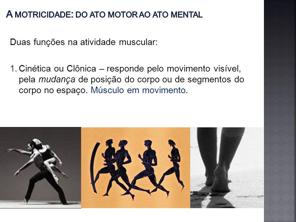 Duas funções na atividade muscular: 1.Cinética ou Clônica – responde pelo movimento visível, pela mudança de posição do corpo ou de segmentos do corpo no espaço.