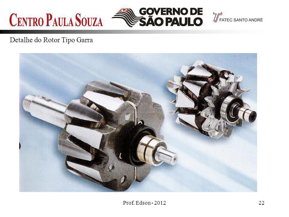 Prof. Edson - 201222 Detalhe do Rotor Tipo Garra