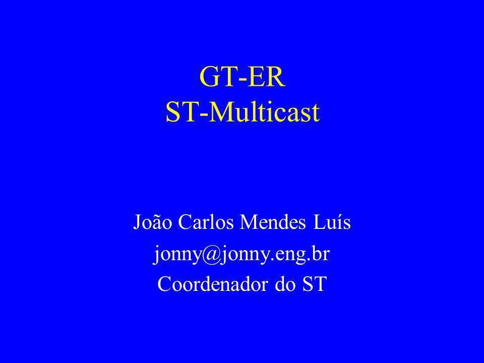 GT-ER ST-Multicast João Carlos Mendes Luís jonny@jonny.eng.br Coordenador do ST