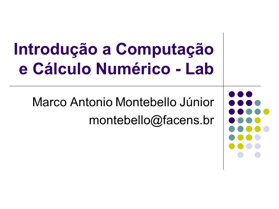 Introdução a Computação e Cálculo Numérico - Lab Marco Antonio Montebello Júnior montebello@facens.br