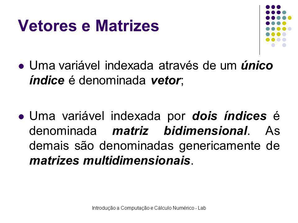 Introdução a Computação e Cálculo Numérico - Lab Vetores e Matrizes Uma variável indexada através de um único índice é denominada vetor; Uma variável