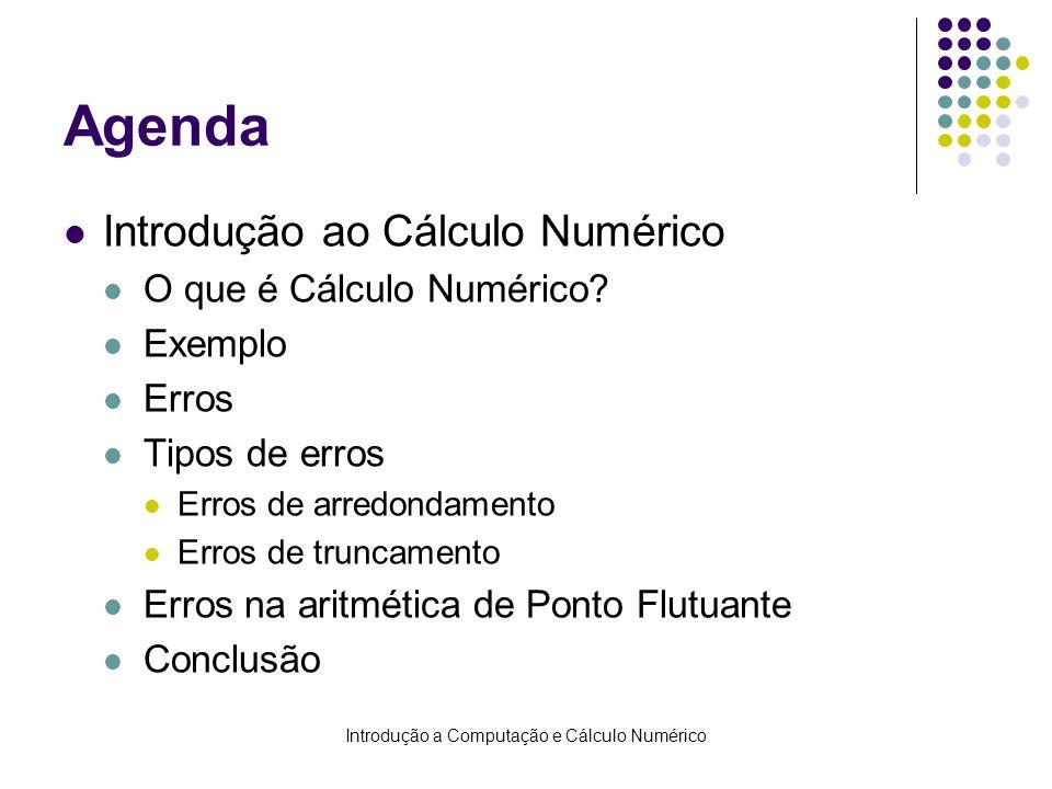 Introdução a Computação e Cálculo Numérico Agenda Introdução ao Cálculo Numérico O que é Cálculo Numérico? Exemplo Erros Tipos de erros Erros de arred