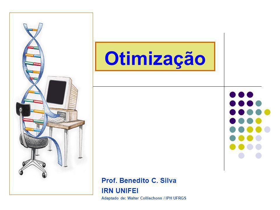 Otimização Prof. Benedito C. Silva IRN UNIFEI Adaptado de: Walter Collischonn / IPH UFRGS
