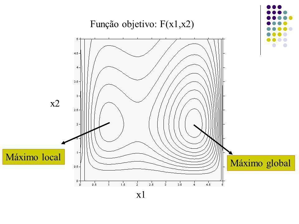 Máximo global Máximo local Função objetivo: F(x1,x2) x1 x2