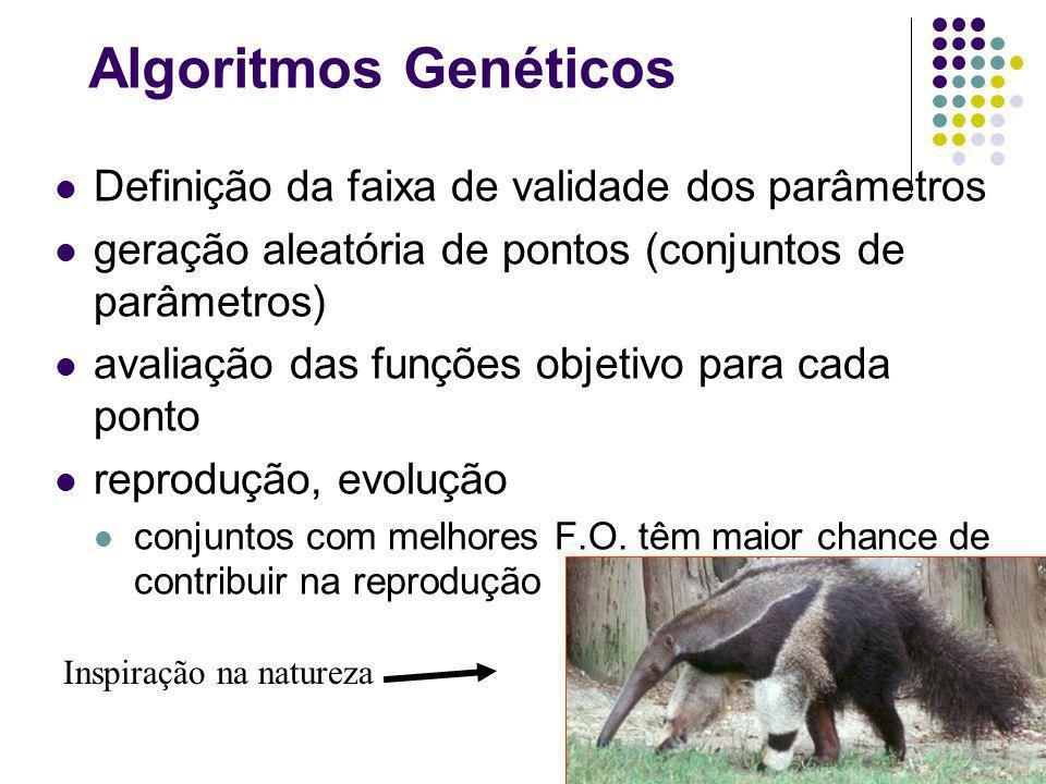 Algoritmos Genéticos Definição da faixa de validade dos parâmetros geração aleatória de pontos (conjuntos de parâmetros) avaliação das funções objetivo para cada ponto reprodução, evolução conjuntos com melhores F.O.