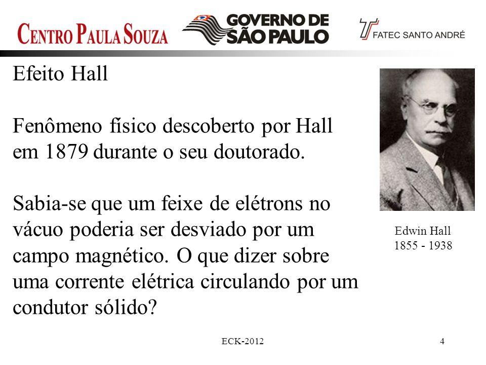 Prof. Edson-201225 Passarini, L.C. JBSM 2003 vol. XXV no.4