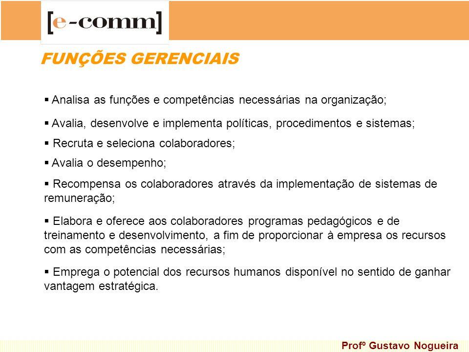 FUNÇÕES GERENCIAIS Analisa as funções e competências necessárias na organização; Avalia, desenvolve e implementa políticas, procedimentos e sistemas;