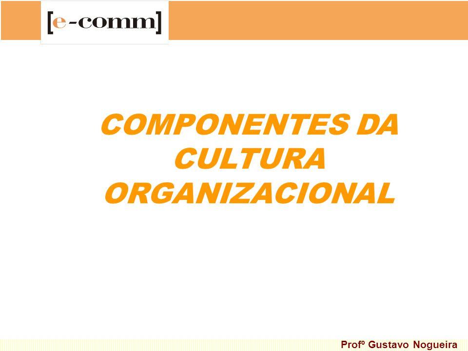 COMPONENTES DA CULTURA ORGANIZACIONAL Profº Gustavo Nogueira