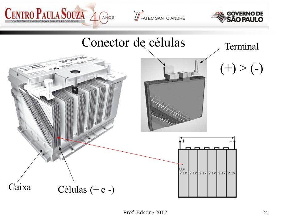 Prof. Edson - 201224 Caixa Células (+ e -) Conector de células Terminal (+) > (-)