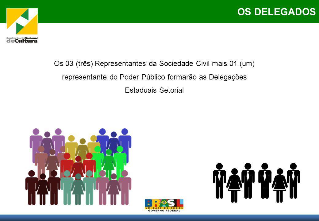 PARTICIPANTES OS DELEGADOS Os 03 (três) Representantes da Sociedade Civil mais 01 (um) representante do Poder Público formarão as Delegações Estaduais Setorial