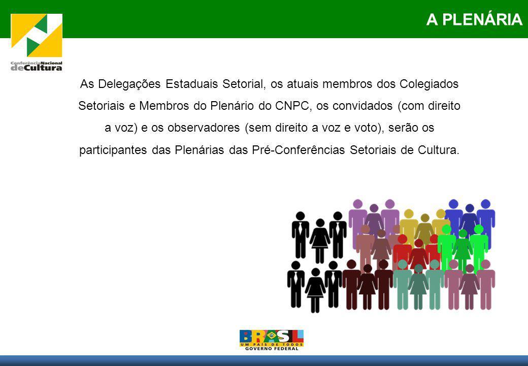 A PLENÁRIA As Delegações Estaduais Setorial, os atuais membros dos Colegiados Setoriais e Membros do Plenário do CNPC, os convidados (com direito a voz) e os observadores (sem direito a voz e voto), serão os participantes das Plenárias das Pré-Conferências Setoriais de Cultura.