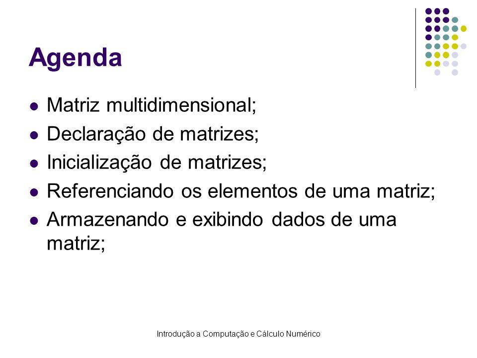 Introdução a Computação e Cálculo Numérico Agenda Matriz multidimensional; Declaração de matrizes; Inicialização de matrizes; Referenciando os element