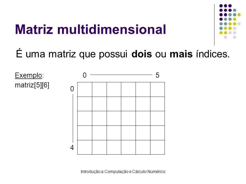 Introdução a Computação e Cálculo Numérico Matriz multidimensional É uma matriz que possui dois ou mais índices. Exemplo: matriz[5][6] 0 05 4