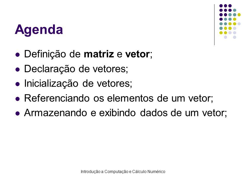 Introdução a Computação e Cálculo Numérico Agenda Definição de matriz e vetor; Declaração de vetores; Inicialização de vetores; Referenciando os eleme