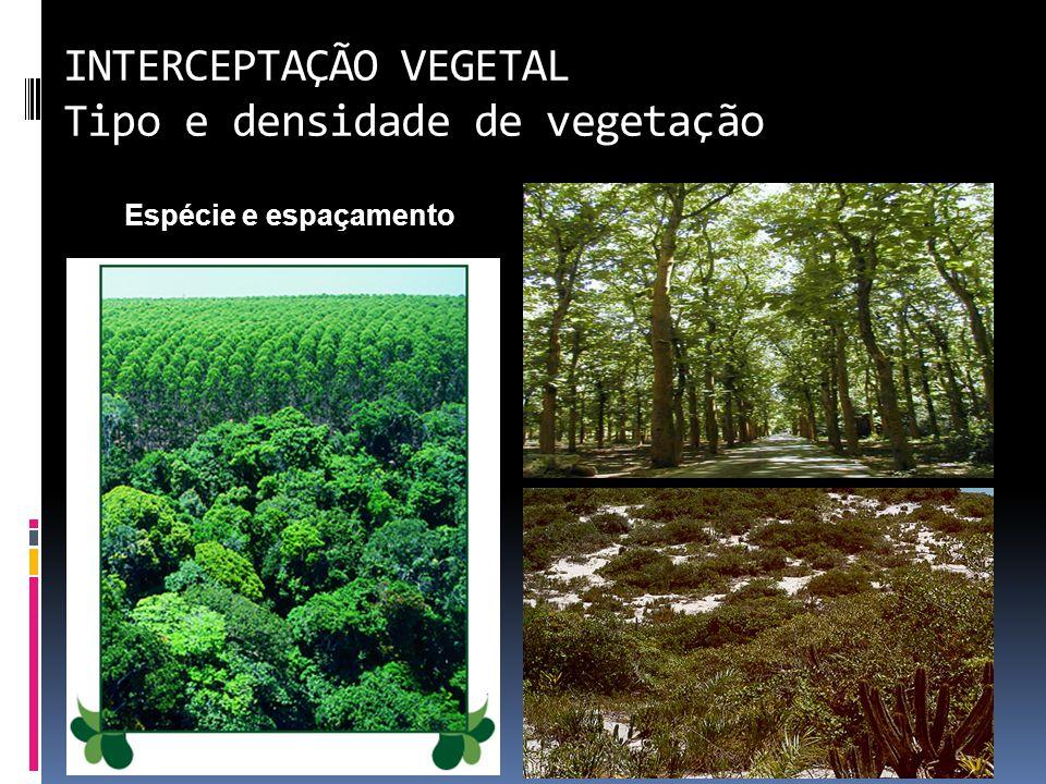 INTERCEPTAÇÃO VEGETAL Tipo e densidade de vegetação Espécie e espaçamento