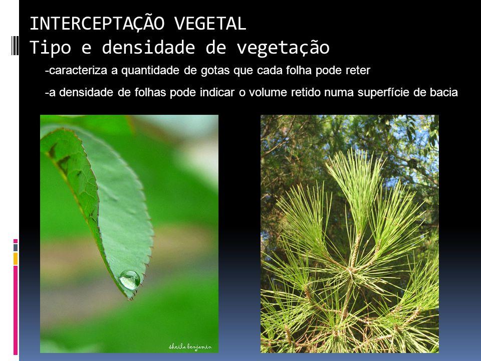INTERCEPTAÇÃO VEGETAL Tipo e densidade de vegetação -caracteriza a quantidade de gotas que cada folha pode reter -a densidade de folhas pode indicar o volume retido numa superfície de bacia