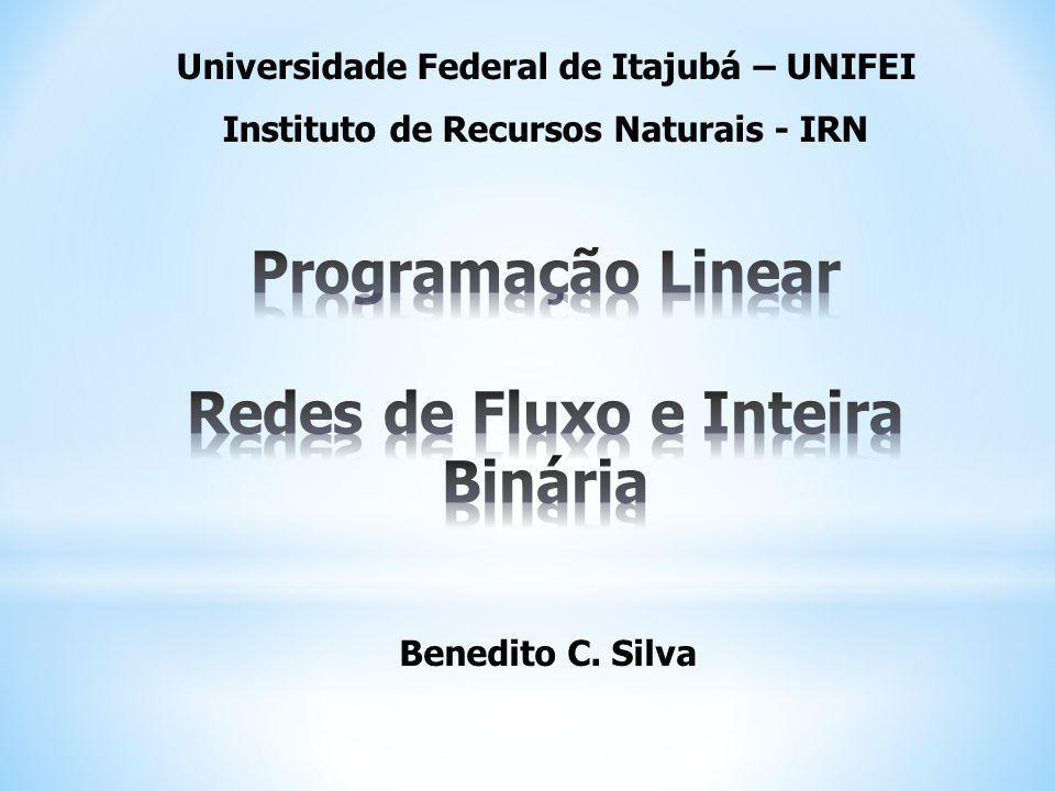 Benedito C. Silva Universidade Federal de Itajubá – UNIFEI Instituto de Recursos Naturais - IRN