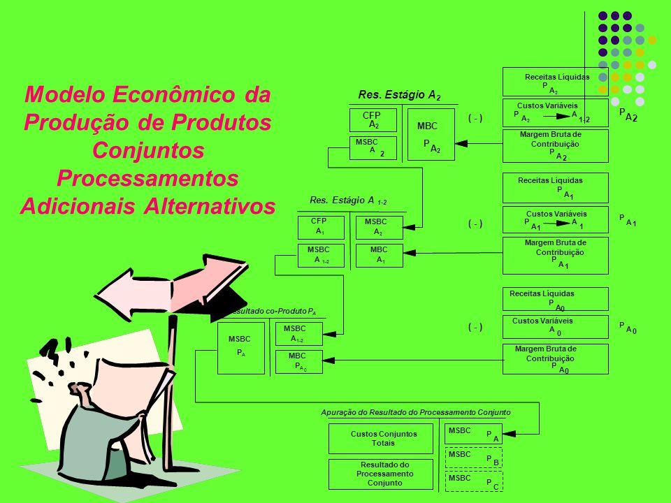 Modelo Econômico da Produção de Produtos Conjuntos Processamentos Adicionais Alternativos