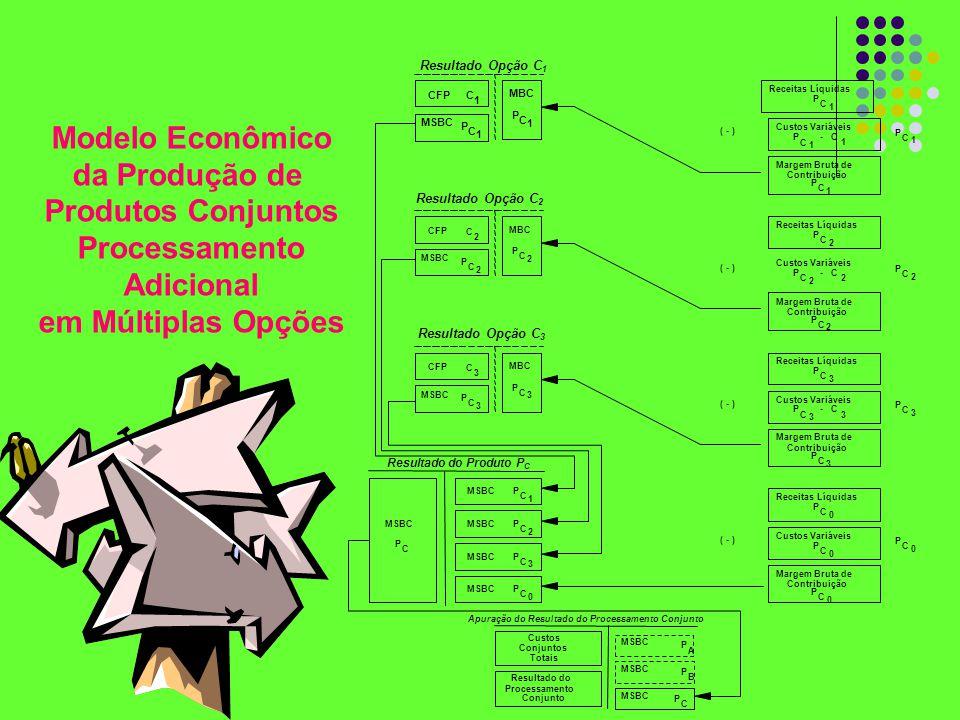 Modelo Econômico da Produção de Produtos Conjuntos Processamento Adicional em Múltiplas Opções