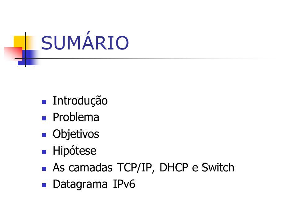 SUMÁRIO Introdução Problema Objetivos Hipótese As camadas TCP/IP, DHCP e Switch Datagrama IPv6