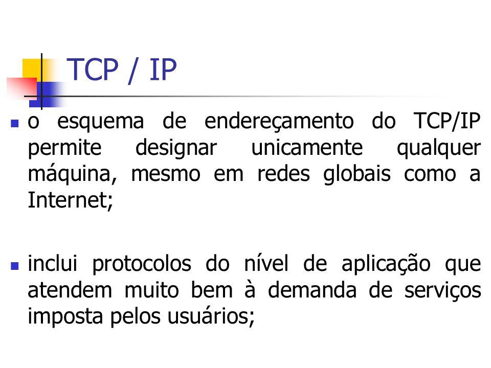 TCP / IP o esquema de endereçamento do TCP/IP permite designar unicamente qualquer máquina, mesmo em redes globais como a Internet; inclui protocolos