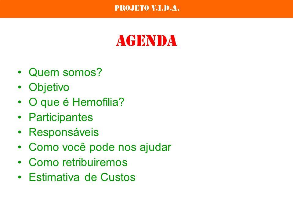 Agenda Quem somos? Objetivo O que é Hemofilia? Participantes Responsáveis Como você pode nos ajudar Como retribuiremos Estimativa de Custos