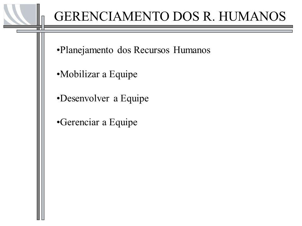GERENCIAMENTO DOS R. HUMANOS Planejamento dos Recursos Humanos Mobilizar a Equipe Desenvolver a Equipe Gerenciar a Equipe