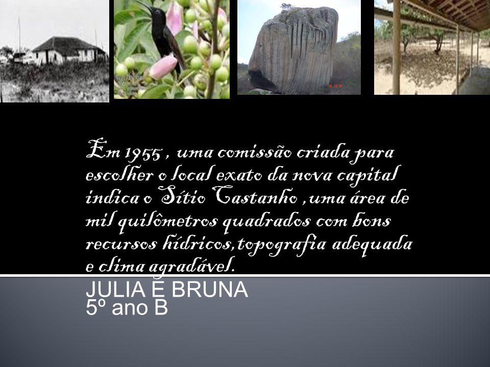 Em 1955, uma comissão criada para escolher o local exato da nova capital indica o Sítio Castanho,uma área de mil quilômetros quadrados com bons recurs