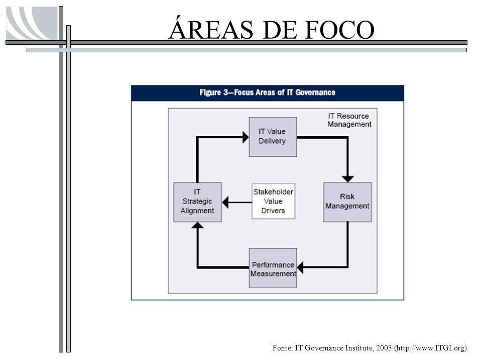 ÁREAS DE FOCO Fonte: IT Governance Institute, 2003 (http://www.ITGI.org)